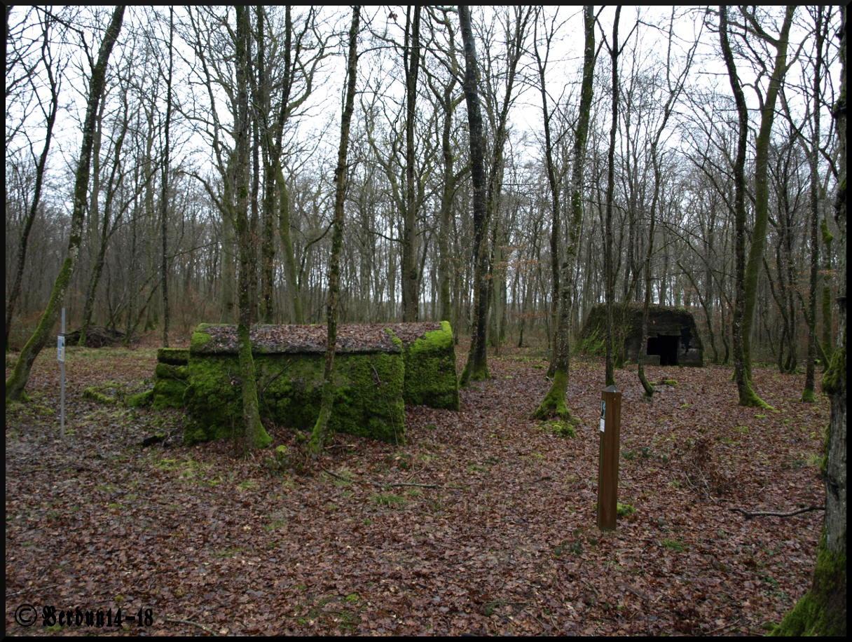 Baroncourt-Geschütz Rundweg