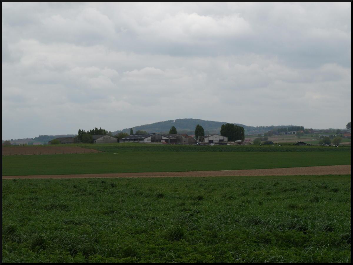Hollandseschuur Farm