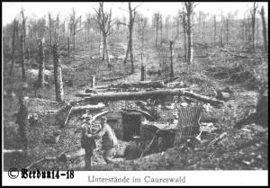 Caureswald