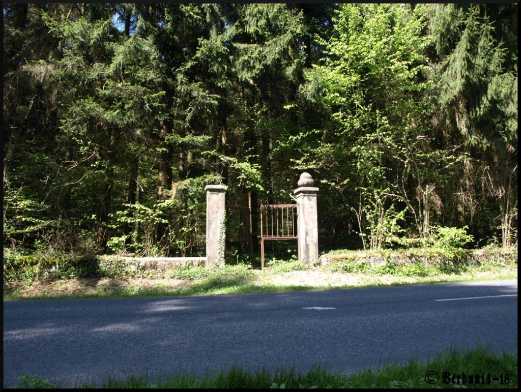 Pionier Friedhof