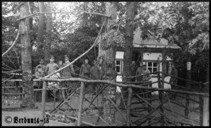 Rabenwald