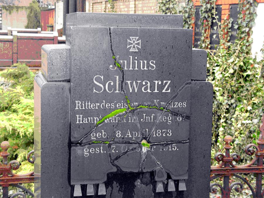 Hauptmann Schwarz